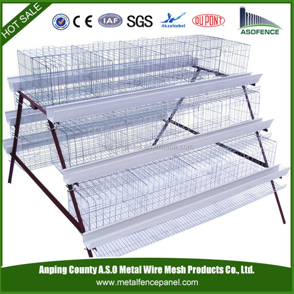 China manufacture automatic durable A type H type galvanized welded wire chicken cages