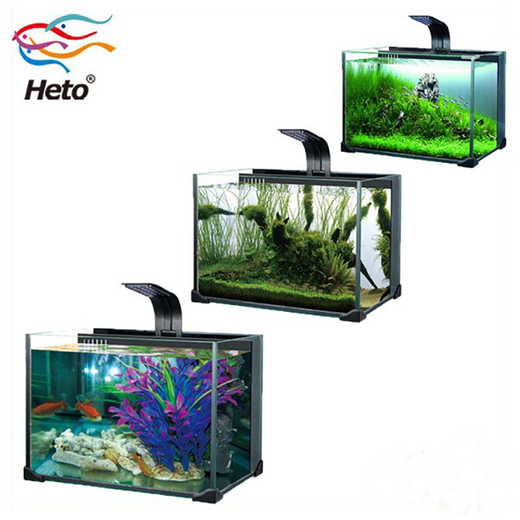 New Design Goldfish Glass Mini Aquarium Tank