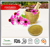 Natural Echinacea Purpurea Extract, High quality Echinacea Purpurea Extract powder
