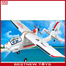 Sky pliot foam RC airplane model