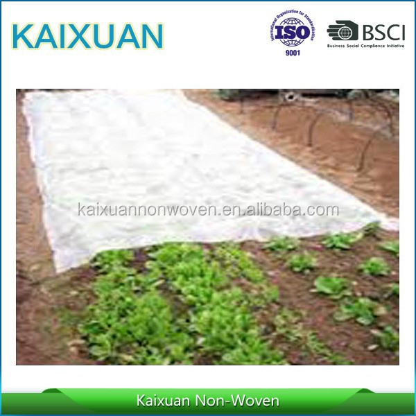 [Factory] vegetable nonwoven protection blankets/PP non-woven plant covers fabric/agricultural products