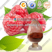 supplement Raspberry extract 10:1 20:1