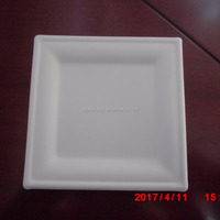 Disposable Molded Pulp Fast Food Packaging
