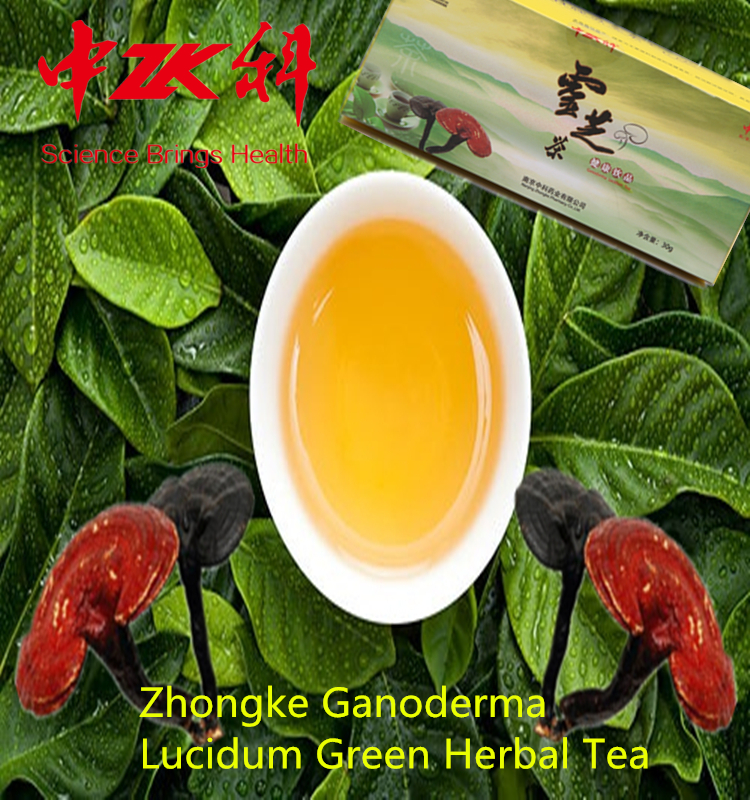 new product!Zhongke ganoderma organic green tea,growing reishi mushrooms