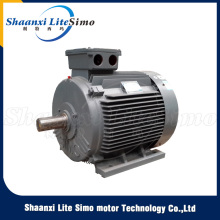 Professional Voltage 220V 7.5kw electric motor siemens