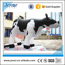 Giant inflatable milk cow for advertising