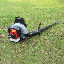 4 Stroke Grass Clipping Cleaning Blower