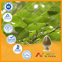 2014 new product provide Factory supply Organic healthy high quality Eucommia Leaf Extract