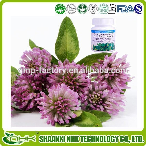 Factory Supply 100% Natural Red Clover Extract Powder