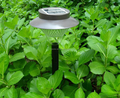 Solar Path Lights for Path, Patio, Deck, Driveway and Garden