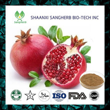 2017 New wholesale pomegranate juice/ Pomegranate Extract Punicalagins powder for sale