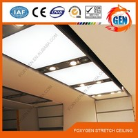 pvc soft stretch ceiling film, high resolution, can print company logo/photo/picture