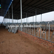Cattle feeding equipment cow headlocks customized design for dairy farm for sale!
