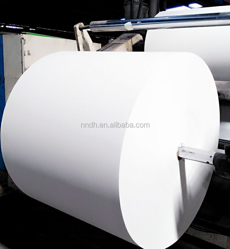 300gsm + 18pe coated paper in Roll/cup stock paper