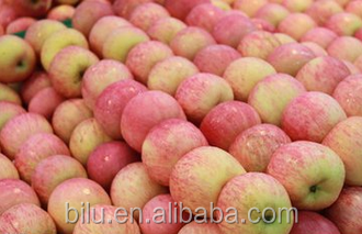 Yantai Fresh fruit Fuji Apple in Carton Package 20Kg