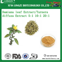 Sexual Enhancement Damiana leaf Extract Powder 5:1 10:1 20:1 damianin P.E with Free Sample