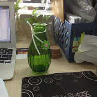 200ml glass vase with leather rope and flower