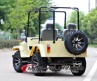 2017 Hot Selling Gas Powered Mini UTV for Sale