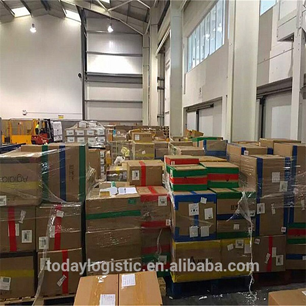 Professional shipping services sea freight forward from china to usa