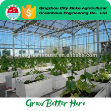 wholesale Orangery Hobby Venlo greenhouse With Professional Technical Support