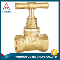 stainless steel stop valve/ss gate valve 1/2 inch brass iron handle iron ball with polishing and ppr nicekl-plated onw way with