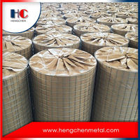 Advanced facility reinforcing 2x2 galvanized welded wire mesh panel