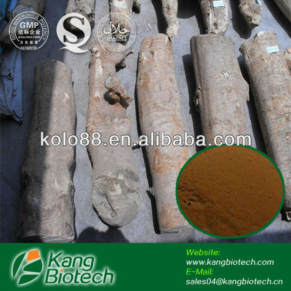 Tongkat Ali 100:1 Powder Extract, Man Hot Sex