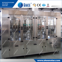 Hot Sale Stainless Steel Fruit Juice Beverage Filling Machine