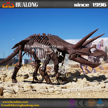 Outdoor Playground Realistic Life Size Triceratops Skeleton