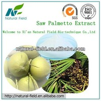 Saw Palmetto P.E. - preventing prostate enlargement and hair loss