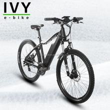 IVY high quality lithium battery electric cross vehicle