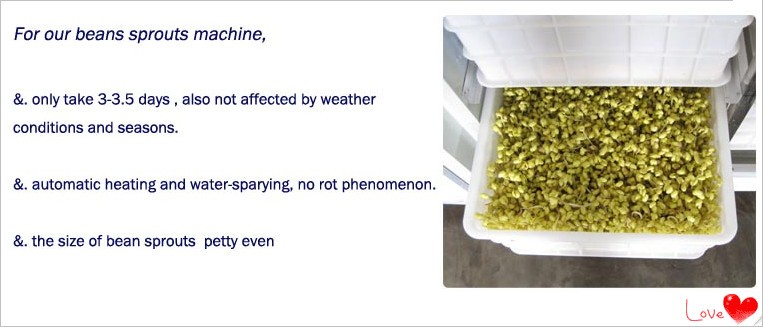 Ozone sterilization bean sprout growing machine automatic mung bean sprout machine