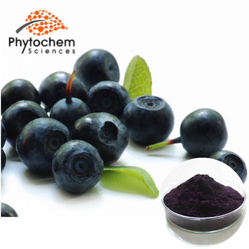 wholesale acai berry powder natural 20:1 Acai Berry Extract