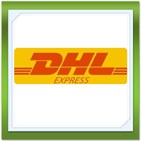 Alibaba express shipping DHL/UPS/FEDEX to US from China