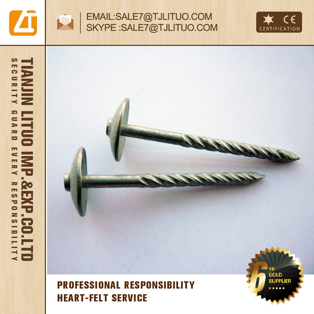 Hot sale Galvanized Umbrella head Roofing Nails stainless steel wire nails