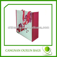 2014 hottest fashion design laminated tesco pp woven shopping bag