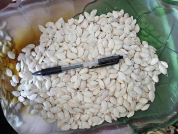 Suntoday ediable pumpkin seeds grade A grade B(15003)