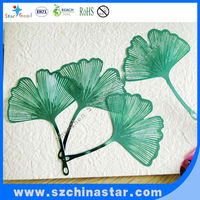 Green and beauitful Ginkgo biloba bookmarks