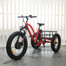 500W three wheel cargo bike car pedal tricycle with fat tire