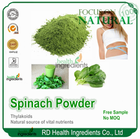Free Sample GMP facotry supplier thylakoids spinach powder extract