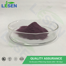 ISO Kosher certified high quality 25% anthocyanin from purple corn