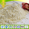 SHENGYUAN Food pharma grade 5% Lyophilized Royal Jelly Powder