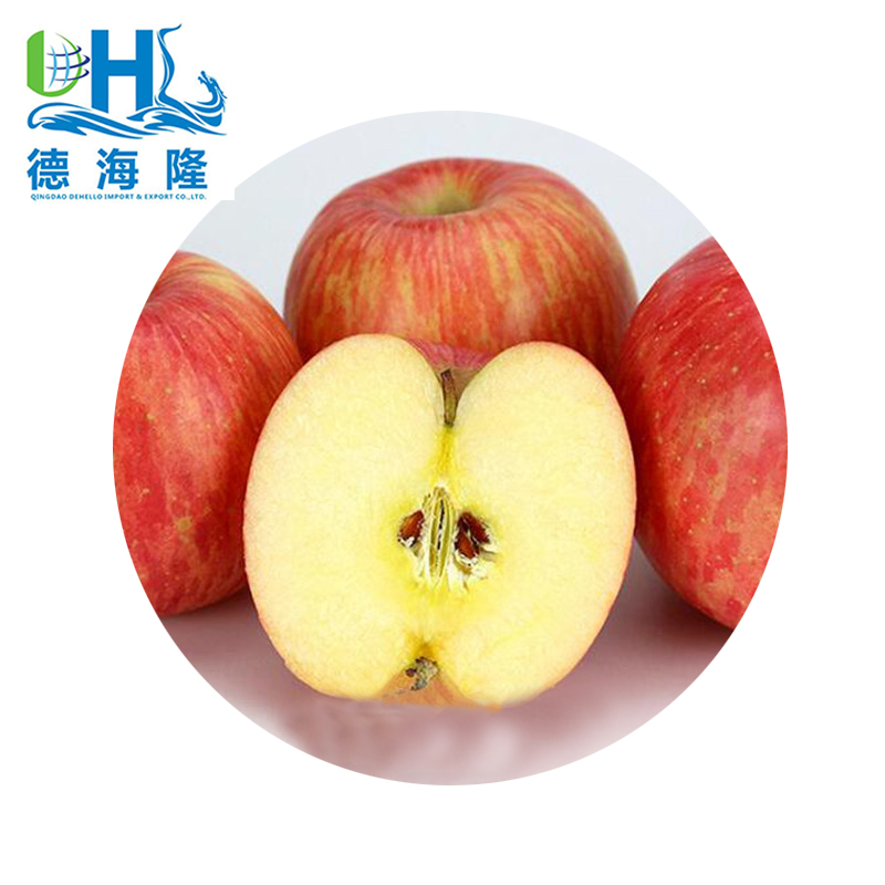 Fresh Fuji Apples with 20kg/18kg carton packing
