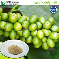 Fat burning supplement green coffee bean extract powder
