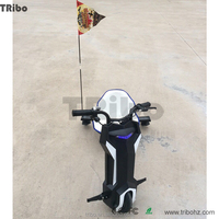 2016 newest hot selling Li-ion battery 3 wheel electric vehicles with 350W brushless motor