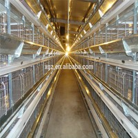 Galvanized Wire Mesh Chicken Coop Poultry Farm In Malaysia