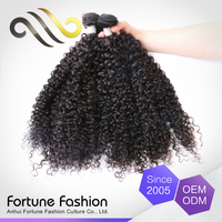 Oem Colour Indian Remy Wet Wavy Kinky Curly Hair Bundles Extension
