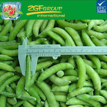 premium vegetables high quality fresh raw material IQF snow pea snap pea