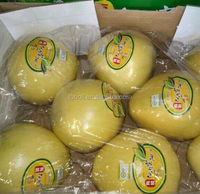 New Chinese Sweet Citus Fruits (Grapefruit) Fresh Red Honey Pomelo