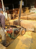 cut 1200mm diameter wood log in 50s portable wood slasher with chain /cutter wood machine